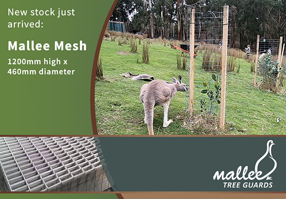 Mallee Mesh1200mm High Tree Guards Now in Stock